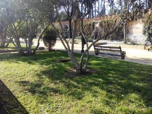 Parque y Jardines